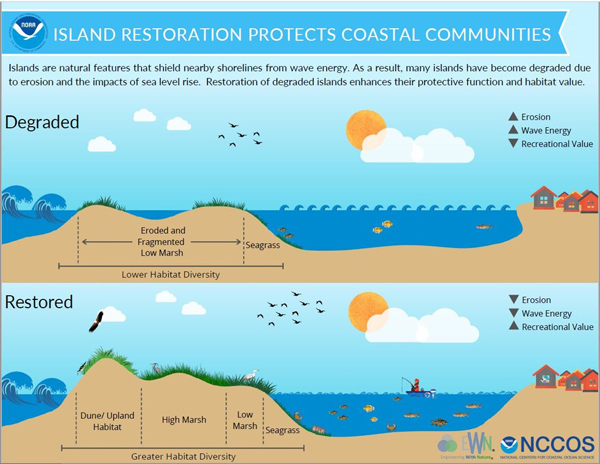 NOAA figure that illustrates benefits derived from restored islands.