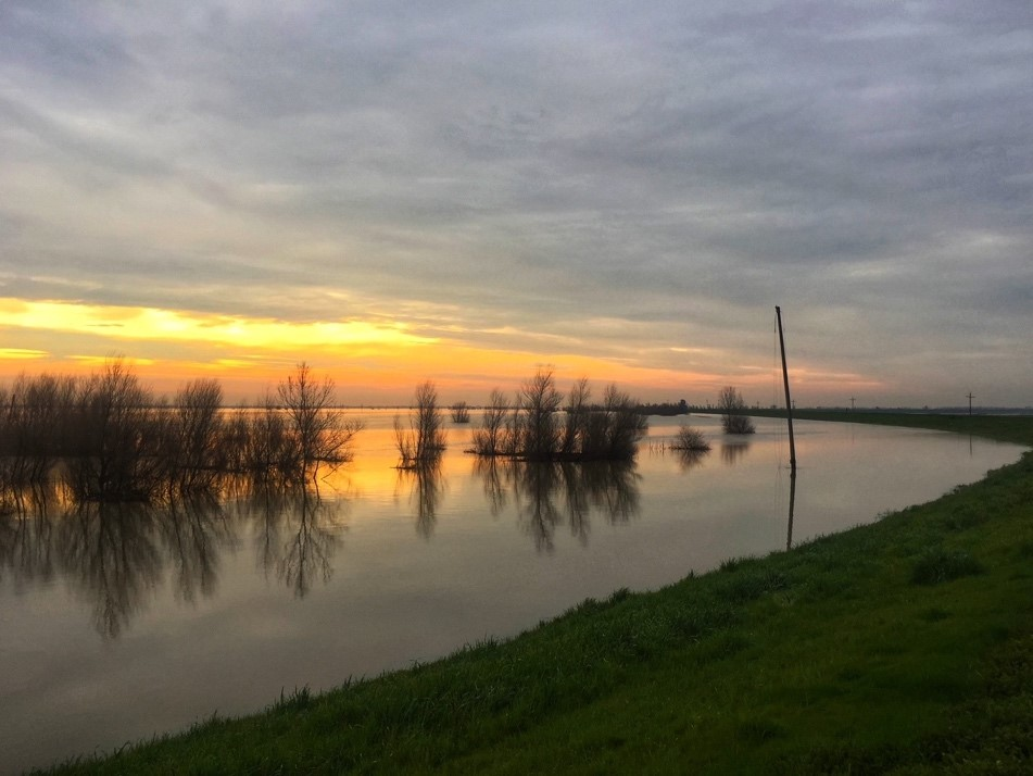 Image of the Yolo Bypass Wildlife Area during flooding showing trees peeking out of the water at sunset. The trees and orange and blue cloudy sky are reflected on the water.